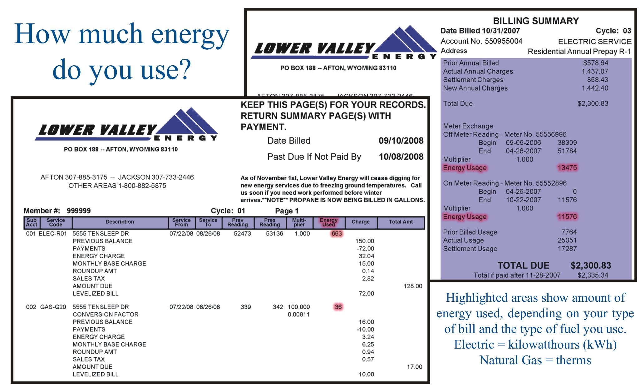 How To Read Your Bill Lower Valley Energy