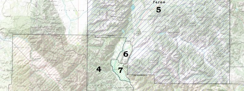 Map of director districts
